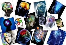 http://coachingentreprise.files.wordpress.com/2010/12/cerveau-global.jpg